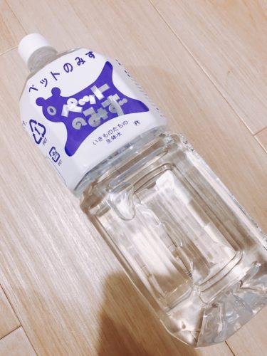 【ペット専用飲料水】ペットのみずをチンチラにあげてみた。人間が飲む水とどう違う?